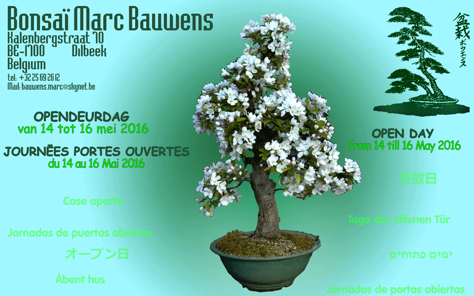 bauwens 2016-05